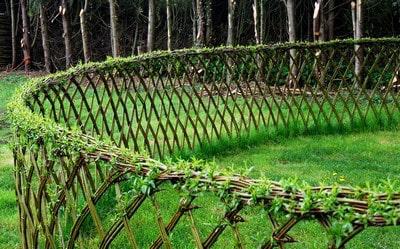 Clôture de jardin Végétale